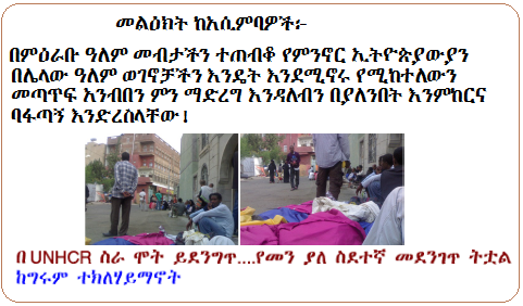 Olf s inconsistencies lies and fabrications for Assimba ethiopian cuisine