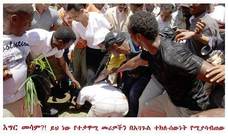 Assimba remembering the november 2005 election massacre for Assimba ethiopian cuisine